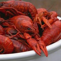 20lb Boiled Cajun Crawfish Pack