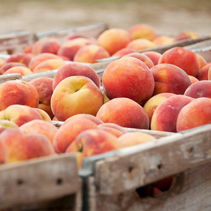 The Peach Truck Gift Box - 2 Boxes