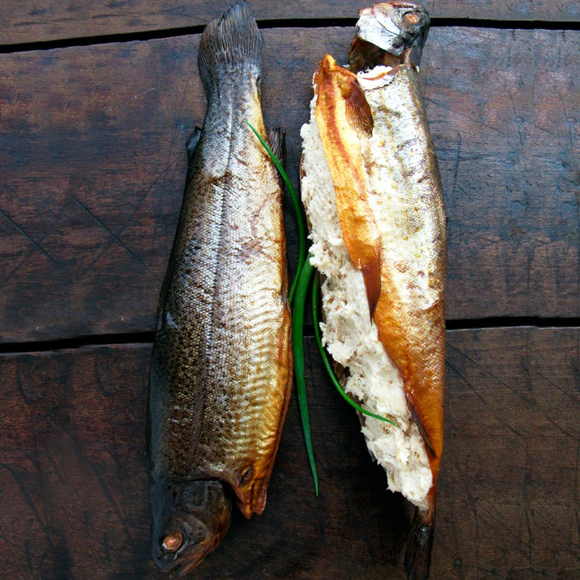 Two Brook Trout