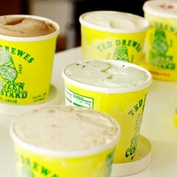 Ted Drewes Epic Concretes - 8 Pack