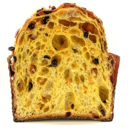 Candied Orange Raisin Panettone