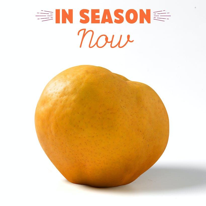 Atago Asian Pears
