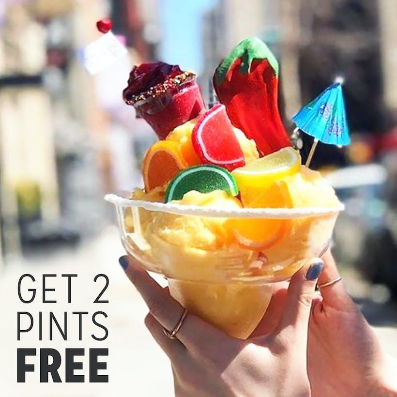 Boozy Ice Cream SALE - 2 FREE PINTS When You Buy 4