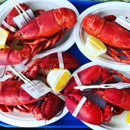 Cooked 2 lb. Lobsters