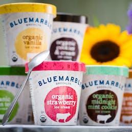Choose Your Own Organic Ice Cream - 6 Pints