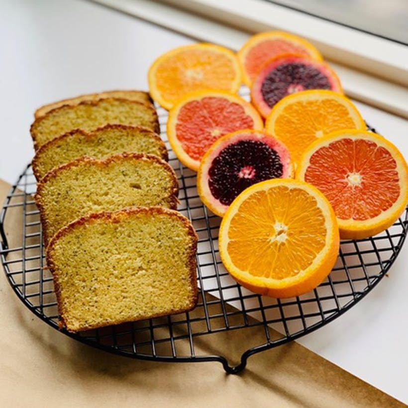 Orange Poppy Loaf Cake - 2 Pack
