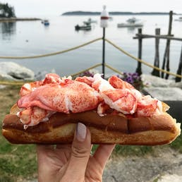 Maine Lobster Roll Kit - 6 Pack