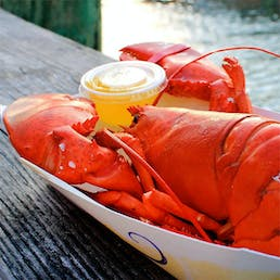 Cooked 2 lb Lobster - 4 Pack