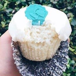 Simply Vanilla Cupcake Dozen