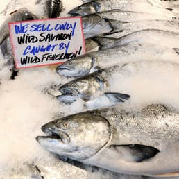 Fresh Wild Pacific King Salmon - Whole