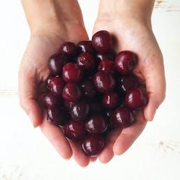 "Sour Michigan ""Balaton"" Cherries - 3 lbs"