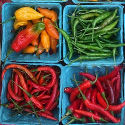 Heirloom Chile Pepper Variety Pack - 4 Pints