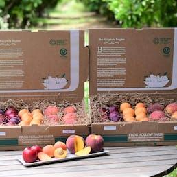 Organic Mixed Fruit Box - 10lbs