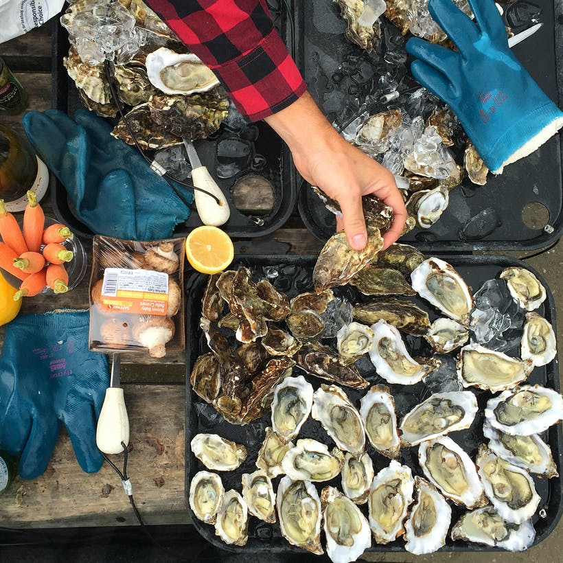 Rappahannock River Oysters - 75 Oyster Variety Pack
