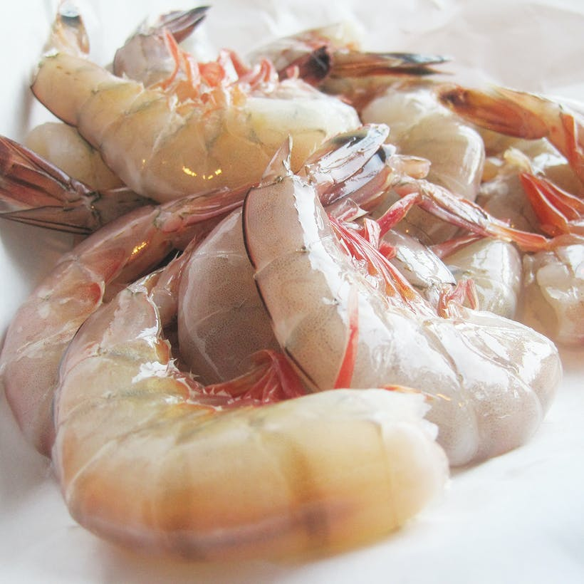 Headless Jumbo Gulf Shrimp - 5lbs